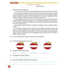 Limba română - Auxiliar pentru clasa a IV-a – semestrul I, fig. 8