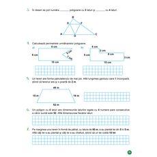 Matematica - Auxiliar pentru clasa a IV-a – semestrul al II-lea, fig. 7
