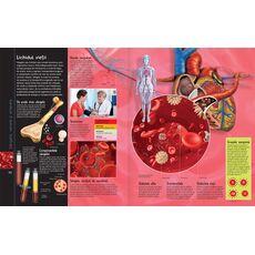 Corpul uman + aplicație gratuită, fig. 3