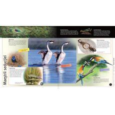 Întâmplări uimitoare din lumea animalelor 3D, fig. 2