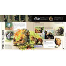 Întâmplări uimitoare din lumea animalelor 3D, fig. 3