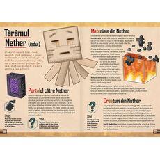 Manualul jucătorului 1, fig. 3