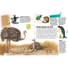 Păsări și mamifere, fig. 2